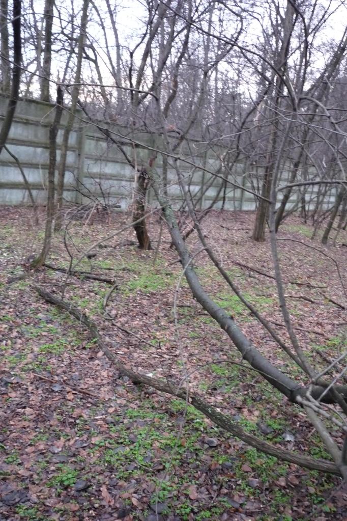 A HÁP ov2 kerítései_között